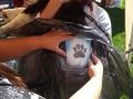 doggy-tattoos